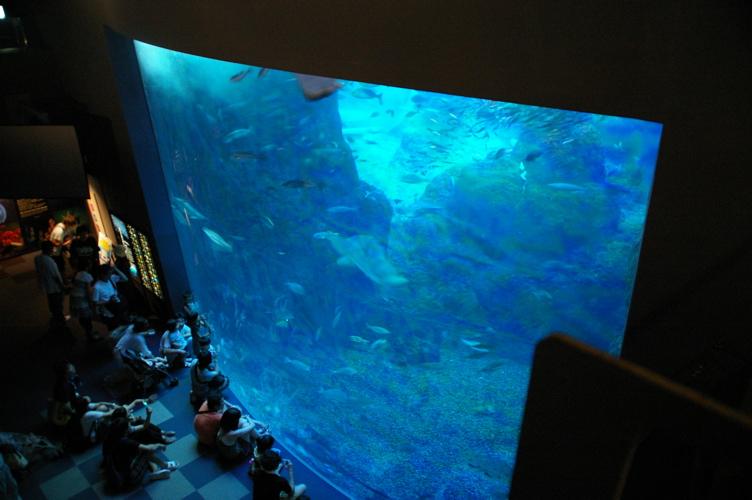 20100719江ノ島水族館 - 10.jpg