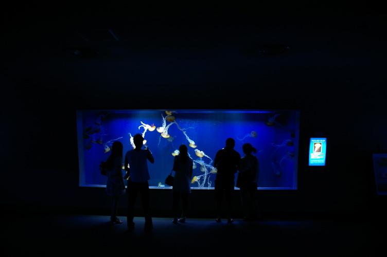 20100719江ノ島水族館 - 63.jpg